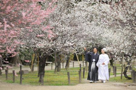 広島 縮景園和装前撮りプラン-広島 縮景園 スタジオフィール