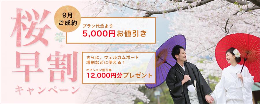 桜 さくら 前撮り キャンペーン 福岡 スタジオフィール