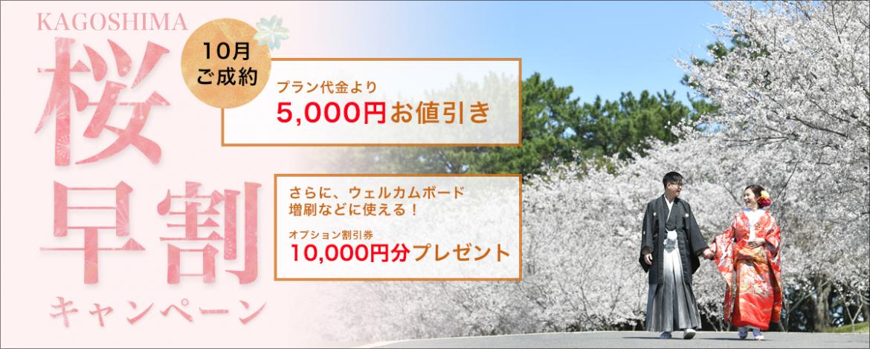 桜 前撮り 鹿児島 吉野公園 桜島 スタジオフィール