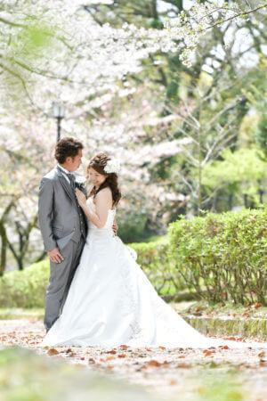 熊本城 桜 さくら
