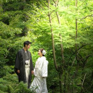 小倉城庭園内の緑の中で
