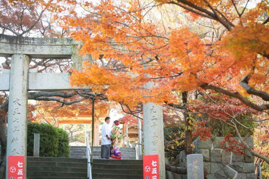 福岡 神社前撮り 紅葉八幡宮