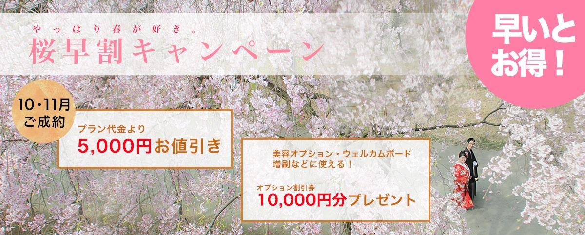 福岡・桜前撮りキャンペーン